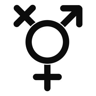 Why have we changed our attitude to gender?