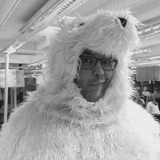 34. Miksi jääkarhu ei itse pitchaa avannosta?