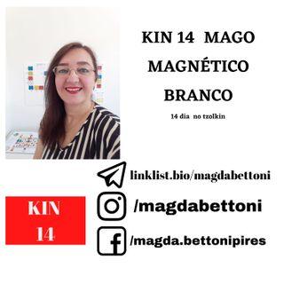 KIN 14  MAGO MAGNÉTICO BRANCO - 2ª Onda Encantada do Tzolkin –  ONDA ENCANTADA DO MAGO BRANCO