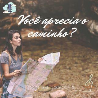 Você aprecia o caminho?