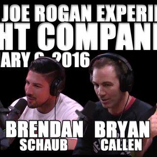 Fight Companion - February 6, 2016