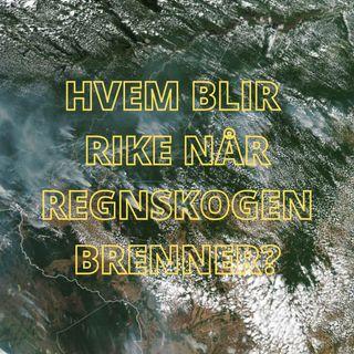9 - 2020 Hvem blir rike når Regnskogen brenner?