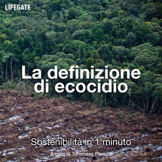 La definizione di ecocidio