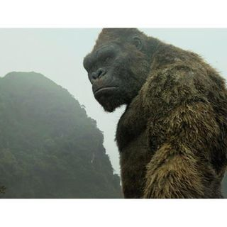 Cinema Royale Bows Down To The King, KONG: SKULL ISLAND