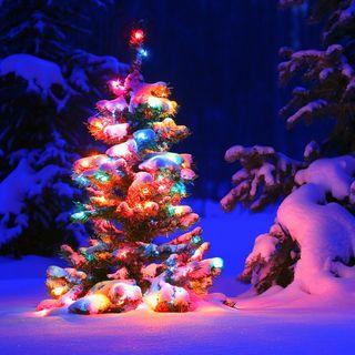 Especial de Navidad ElsillónCast