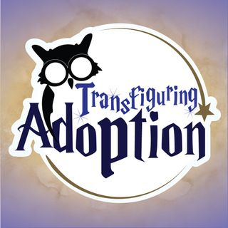 Foster Leaders Select feat Transfiguring Adoption