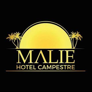 Proceso Consultor - Hotel Malie