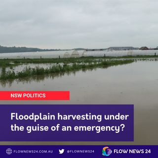 As northern NSW floods, what's the truth on floodplain harvesting in the Murray-Darling Basin? - with @HelenDalton22