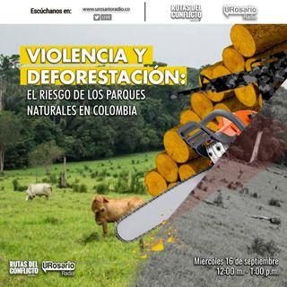 Violencia y deforestación: el riesgo de los parques naturales en Colombia