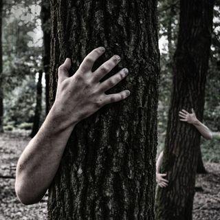 Unser Leben in den Wäldern - Eine finstere Zukunftsvision