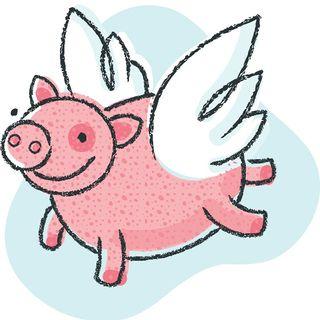 Year Of Pig Fashion