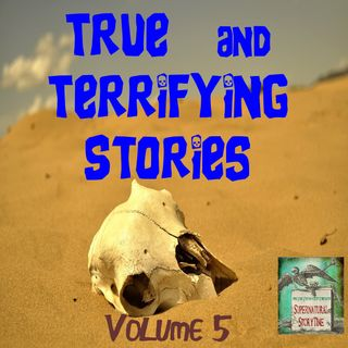 True and Terrifying Stories | Volume 5 | Podcast E157