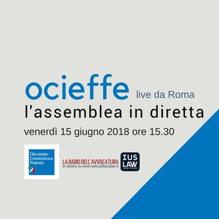 Assemblea OCIEFFE 15 Giugno 2018 - Sessione Pomeridiana