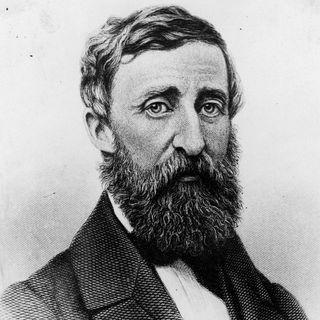 Doğal Yaşam ve Başkaldırı - Henry David Thoreau