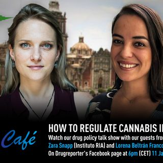 How to Regulate Cannabis in Mexico? - Drugreporter Café