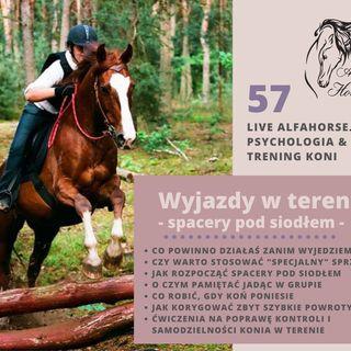 Live 57: Wyjazdy z koniem w teren - Spacery pod siodłem