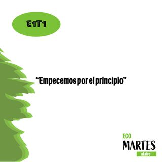 """E1T1: """"Empecemos por el principio"""""""