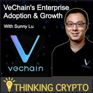 Sunny Lu VeChain CEO Interview - VET, VeThor, Proof of Authority 2 0, Salesforce Partnership
