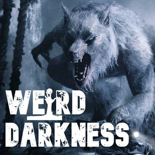"""THE WEREWOLF PANIC OF THE 1970's"" and more dark, true stories!  #WeirdDarkness"