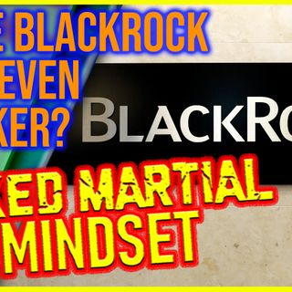 Mixed Martial Mindset: UNCENSORED! Is BlackRock And What's Going On Part Of A Black Project