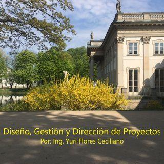 Diseño, Gestión y Dirección de Proyectos