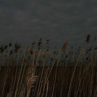 Keşiş-Rainer Maria Rilke