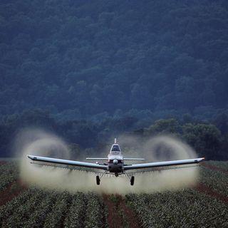 """Pesticidi, nei campi USA 146 mila tonnellate di """"sostanze proibite"""""""