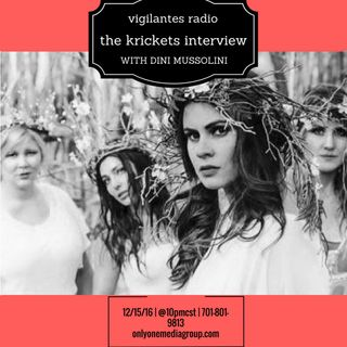 The Krickets Interview