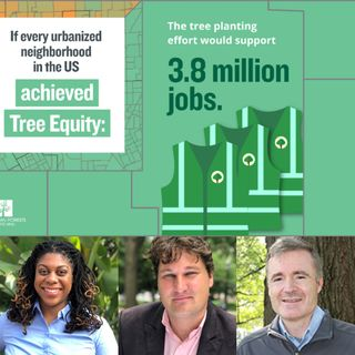 How Trees Can Boost the US Economy - American Forests on Big Blend Radio