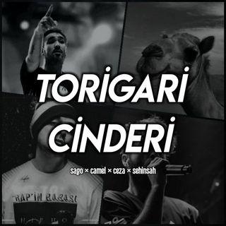 Elanur - Torigari Cinderi