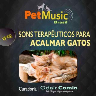 #02 Sons Terapêuticos para Acalmar Gatos | PetMusic
