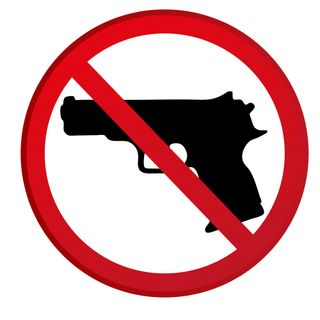 Michigan Supreme Court are for Gun-Free Zone Schools +