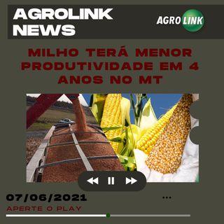 Podcast: Produtividade do milho de Mato Grosso cai depois de quatro anos