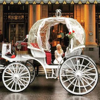 Best Central Park Horse and Carriage Tours in NYC