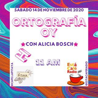 Ortografía oy (H)