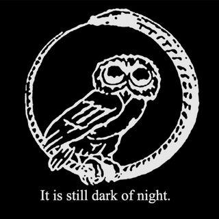 40. Owls