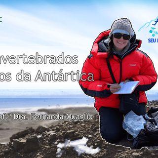 Episódio 4 - Paleoinvertebrados Marinhos - Parte 1 - Com a Paleontóloga Fernanda Quaglio