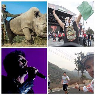 Kenia vs la Caza Ilegal, Vive Latino 2019, Ultra Sierra de Guadalupe, Libretas y Separadores Libroclaroscuro