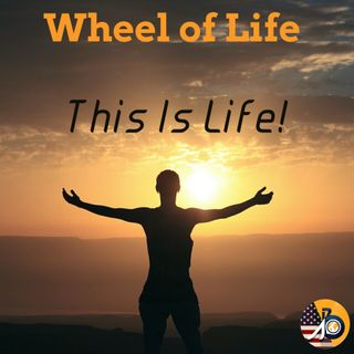 Wheel of Life: June Edition - This Is Life!