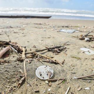 #Ravenna2019 PLASTICBUSTER: Raccogliamo i rifiuti in spiaggia!