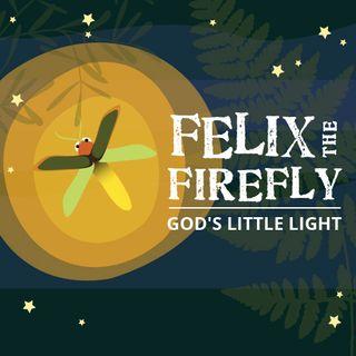 God Created the Firefly