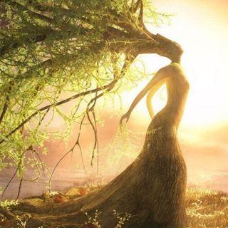 Buongiorno con la meditazione focalizzata per la Madre Terra! 🌱