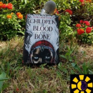 Chapter 8 - Inan Children of Blood and Bone