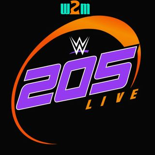 Wrestling 2 the MAX:  WWE 205 Live Review (12.13.16)