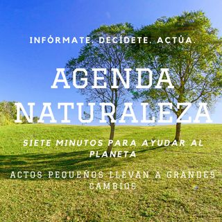Agenda Naturaleza 27. Haz el súper de manera sustentable.