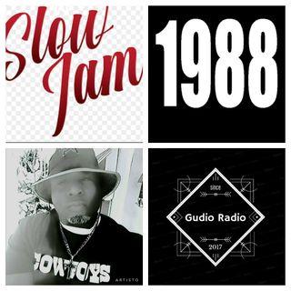 DGratest Gudio Radio Presents : 1988 Slow Jams
