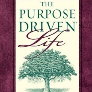 Purpose Driven Life - (Ch. 2 of 40) You Are Not An Accident : Episode #042