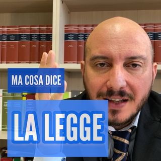 Avvocato, ma cosa dice la legge?