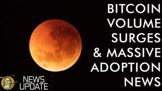 Unbelievable Bitcoin Adoption Bombshell, Bakkt Futures Update, & Crazy Crypto Price Volume