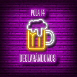 Pola 14 - DECLARÁNDONOS